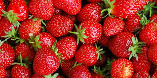 Image result for pics of strawberries