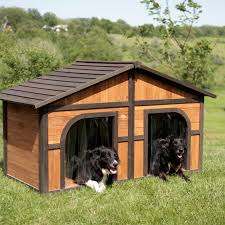Boomer  amp  George Darker Stain Duplex Dog House   FREE Dog Doors    Boomer  amp  George Darker Stain Duplex Dog House   FREE Dog Doors   Dog Houses at Hayneedle