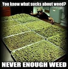 Marijuana :) on Pinterest | Cannabis, Medical Marijuana and ... via Relatably.com