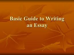 basic guide to writing an essay  what is an essay  an essay can    basic guide to writing an essay
