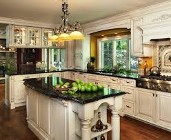 european kitchen design cabinets