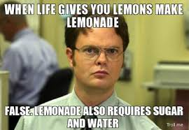 The Top Ten Absolute BEST Dwight Schrute Memes... | The Absolute ... via Relatably.com