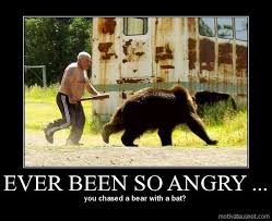 Have you ever been so angry #meme #funny #angry #bear #lol | Funny ... via Relatably.com