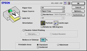 Making Settings in the Page Setup Dialog Box