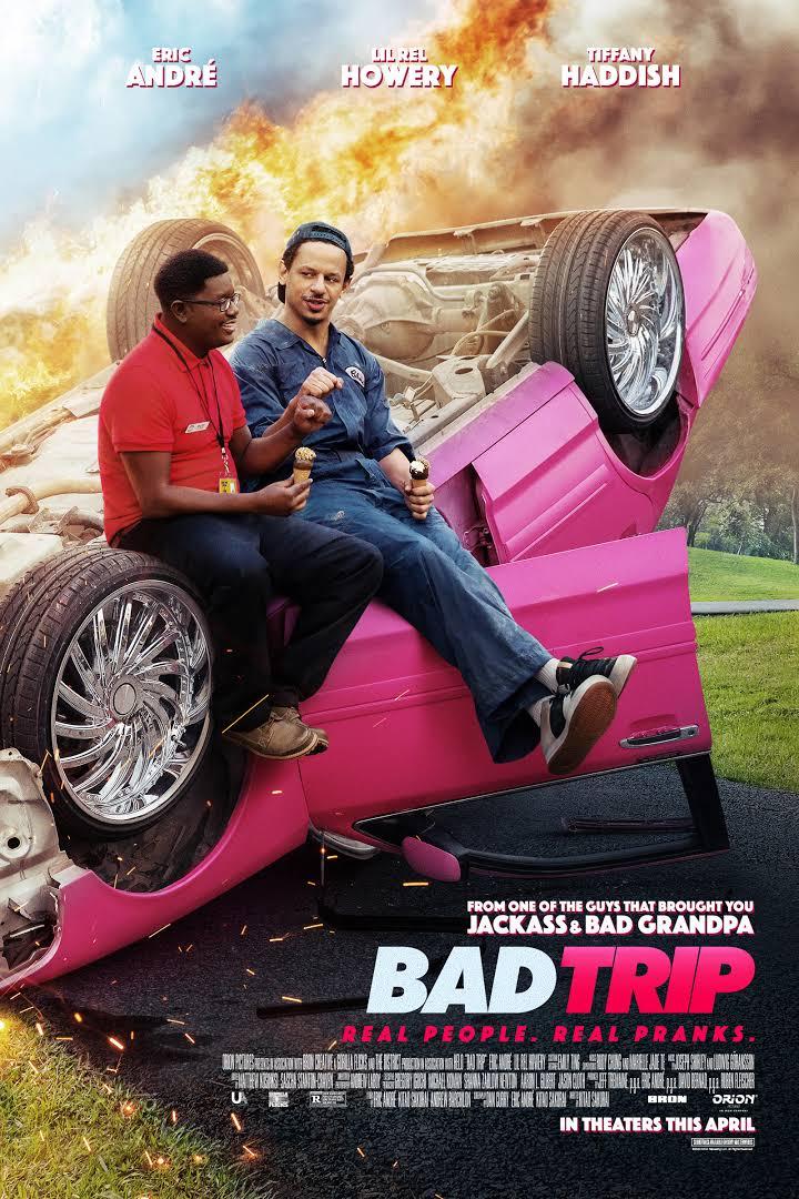 Download Bad Trip (2020) Dual Audio {Hindi-English} 480p | 720p