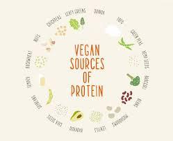 vegan diet health benefits of being vegan  medical news today becoming vegan