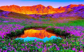 لكل محبي صور الطبيعة  اكبر تجميع لصور الطبيعة Images?q=tbn:ANd9GcQ0_93ukZkFK3BvEB-tMbcNsKQGQJ8u7h1N_oySUHrLuiHHZpTZAg
