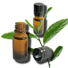 Risultati immagini per Tea Tree Oil