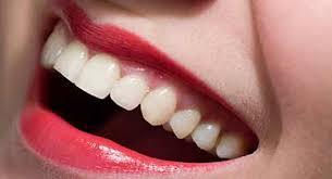 Слизистая оболочка полости рта
