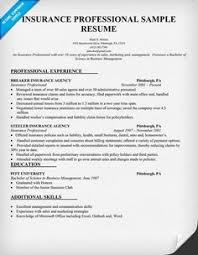 Insurance Professional Resume Sample Pinterest