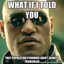 What if I told you that population pyramids aren't always ... via Relatably.com
