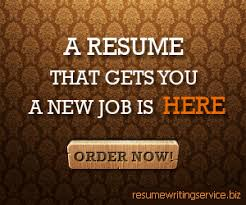 Resume Services Chicago  breakupus mesmerizing download resume     resume writing services in houston tx fedex