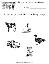 Index of /images/printables/science... life-science-student-worksheet-printable.gif ...