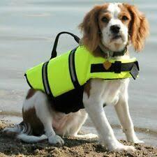 <b>Спасательные жилеты</b> для собак <b>размер xl</b> | eBay
