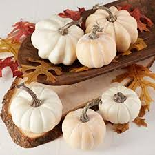 Factory Direct Craft Package of 6 Fall Artificial Assorted <b>Creamy</b>