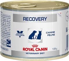 <b>Консервы</b> для собак и кошек, <b>Royal Canin</b> Recovery, в период ...