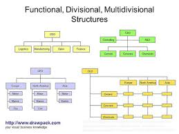 functional  divisional  multidivisional structures diagram   a    functional  divisional  multidivisional structures diagram
