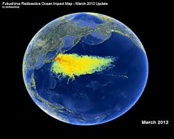 Giappone: una tragedia globale annunciata. Centinaia di balene uccise dalle radiazioni di Fukushima Images?q=tbn:ANd9GcQ1FZIxQFsnqBSOTN_v79Lirmhbdw7yEUUKV8dzhoLFsH0m176V