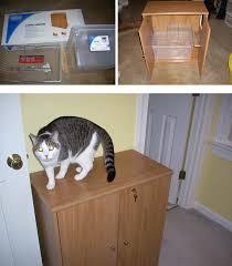 2 door cabinet diy view this image cat litter box furniture diy