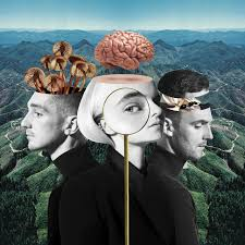 What Is Love? (Deluxe Edition) by <b>Clean Bandit</b> on Spotify