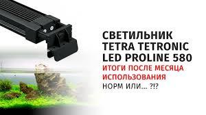Результаты использования <b>светильника Tetra tetronic</b> led proline ...