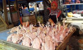 Image result for ayam potong