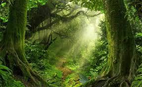 Leowefowa 5X3FT Jungle Forest Backdrop Old Trees <b>Green Vine</b>