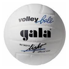<b>Мяч волейбольный GALA Training</b> Light BV5021S, размер 5 ...