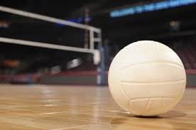 Image result for court volleyball images