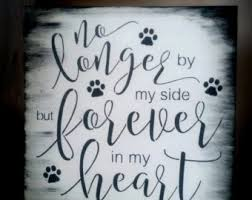 dog shabby chic black white no longer by my side but forever in my heart loss of pet gift dog