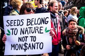 Image result for march against monsanto