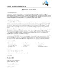resume professional profile examples example of cv for resume resume professional profile examples professional profile examples