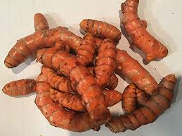 USDA Organic Turmeric Whole Raw Root : Grocery ... - Amazon.com