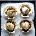 Images & Illustrations of coquilles Saint-Jacques