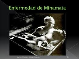 Resultado de imagen para caso de la bahia minamata