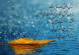 Image result for متن ادبی