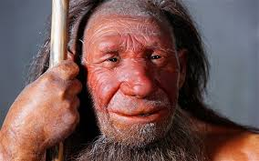 Image result for neanderthal