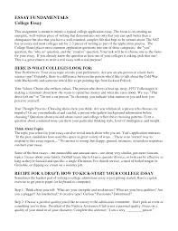 essay high school personal statement sample essays pics resume essay essay example university high school personal statement sample essays pics