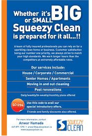 squeezy clean best cleaning service in town toronto ad ads large picture
