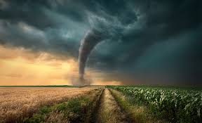 Digital Debunking: Could a Tornado Make a <b>Cow Fly</b>? - Altair ...