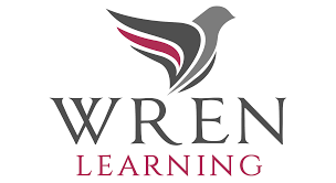 strategic problem solving and decision making wren learning