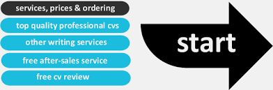 Cv writing services us   aaa aero inc us