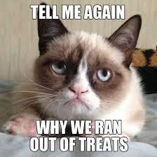 Grumpy Cat Meme (14 Photos) - NoWayGirl via Relatably.com