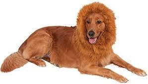 Pet Boy Girl Dog Fluffy Lion Mane <b>Hood Halloween Funny</b> Fancy ...