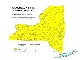 <b>Squirrel</b> Hunting Seasons - NYS Dept. of Environmental Conservation