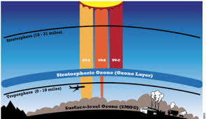 Image result for OZONE LAYER