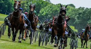 """Résultat de recherche d'images pour """"image d'hippodrome de chevaux"""""""