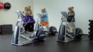 Kia Soul Commercial Song Kia Soul Hamster Commercial Haha Hamster