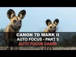 🤑 Labour. Наглазник - рамка Canon Rubber Frame <b>EB</b> для EOS ...