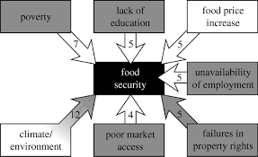 essay on food security in food security essay article speech essay on food security in gxart orgimportance of food security in essay essay topicsfigure